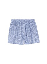 Seasonal stripe paisley print boxer shorts