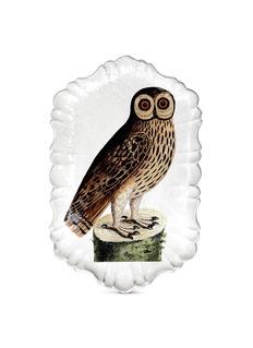 Astier De Villattex John Derian owl platter
