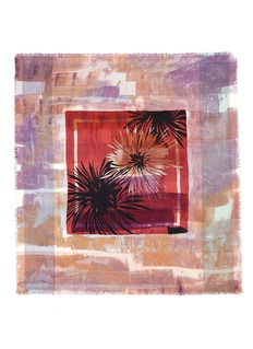 DIANORA SALVIATIVintage daisy cashmere-silk scarf