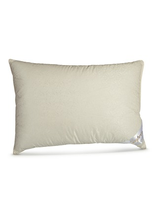 Main View - Click To Enlarge - Brinkhaus - Empress down pillow