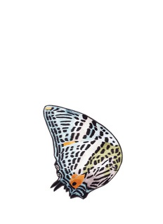 Novel 'Baeotis Aeleius' butterfly wing pocket square