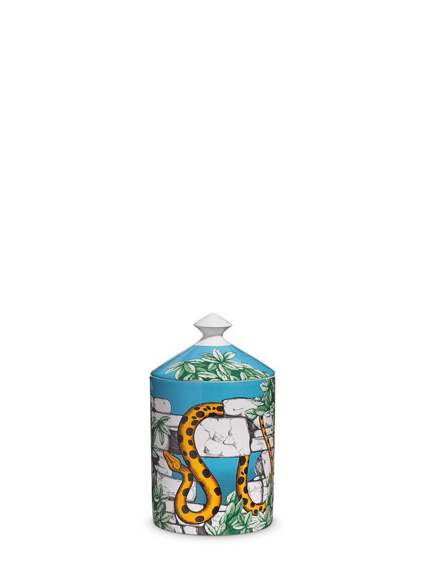 Il Serpente del Giardino small scented candle 300g by Fornasetti