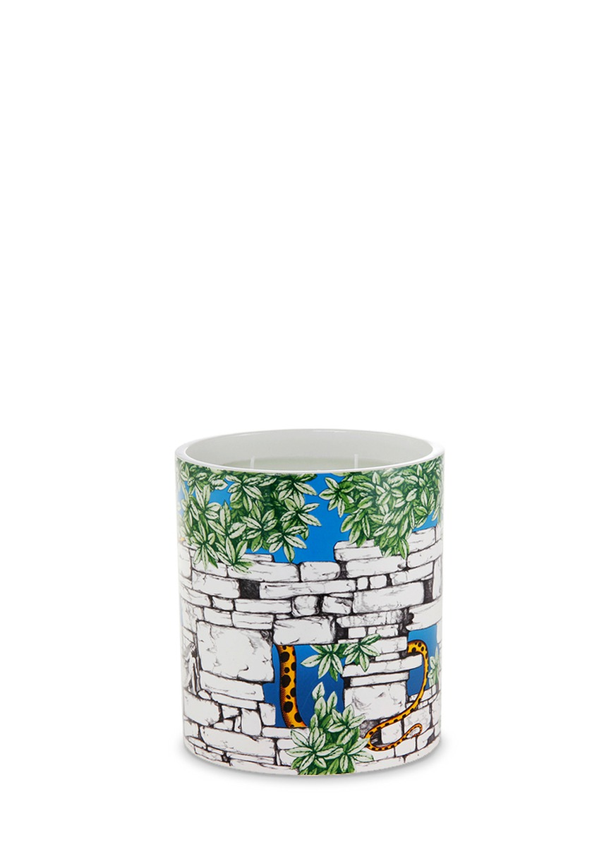 Il Serpente del Giardino large scented candle 1.9kg by Fornasetti