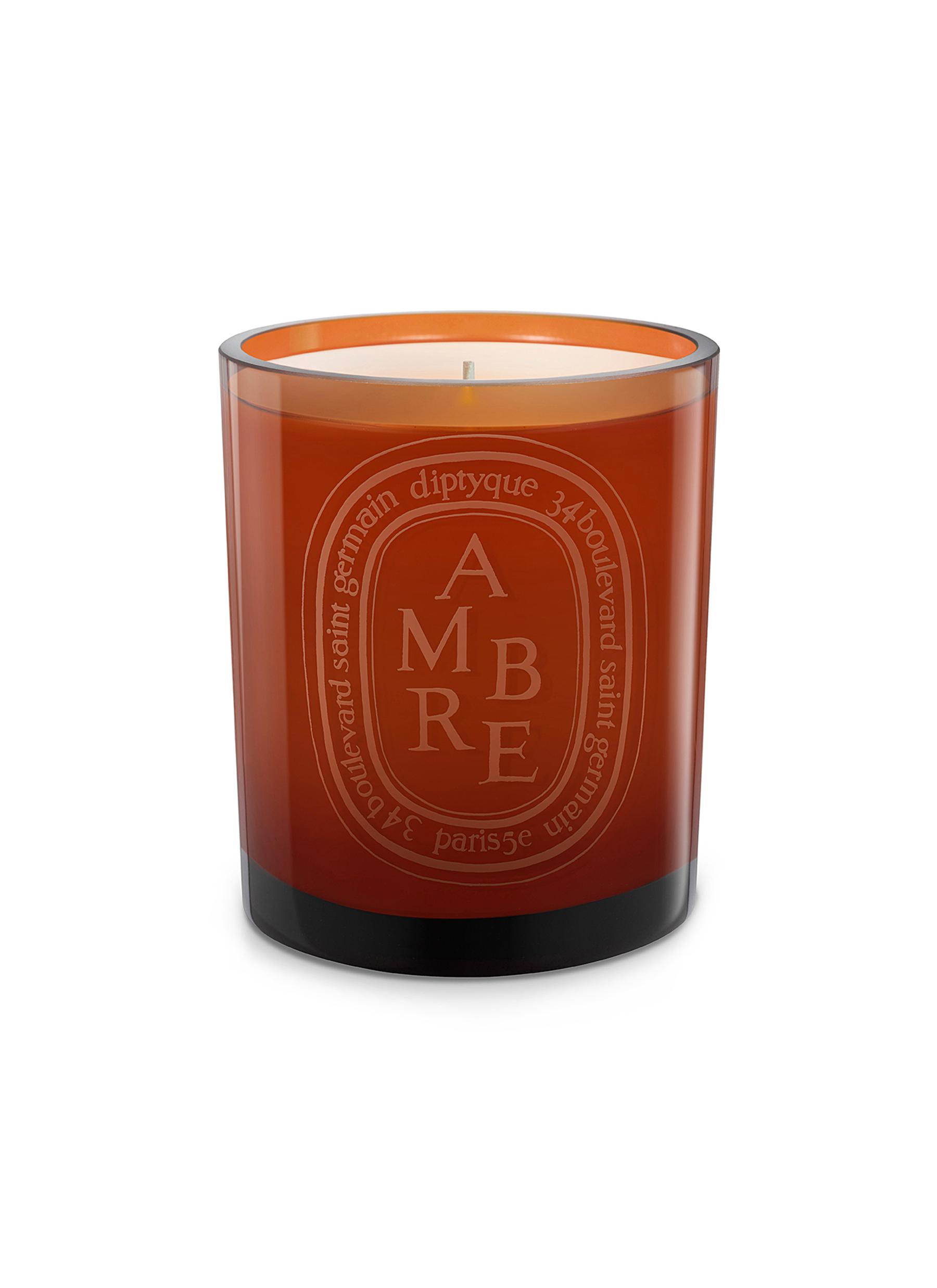 Ambre Cognac Scented Coloured Candle 300g by diptyque