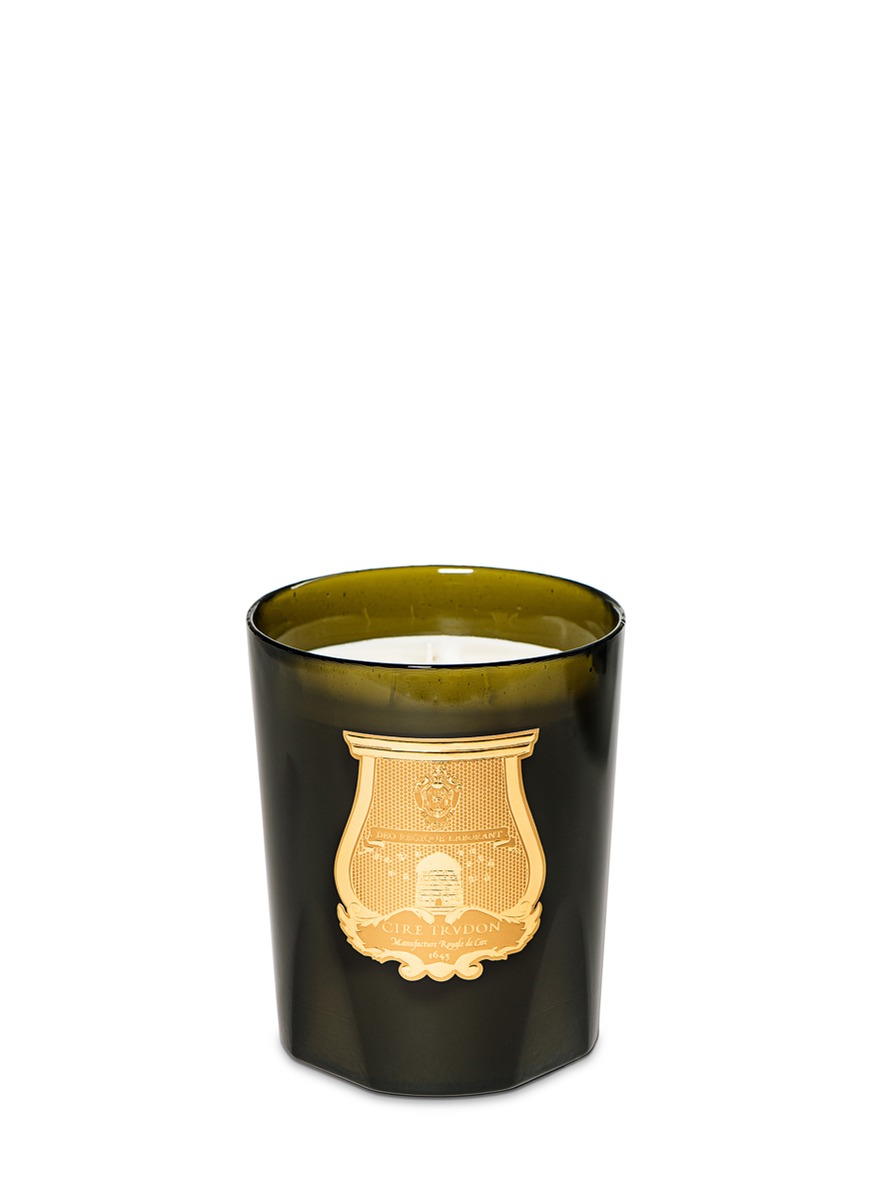 Ernesto great candle 3kg – Leather & Tabaco scent by Cire Trudon