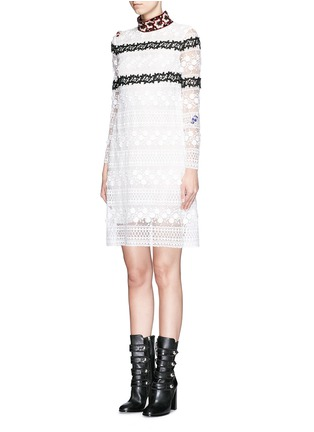 Front View - Click To Enlarge - Giamba - Bug brooch embroidered collar lace dress