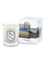 Baies Scented Mini Candle 70g