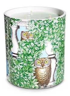 FornasettiIl Serpente del Giardino large scented candle 1.9kg