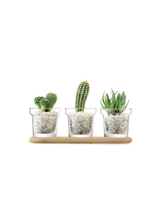 - LSA - Plant pot set