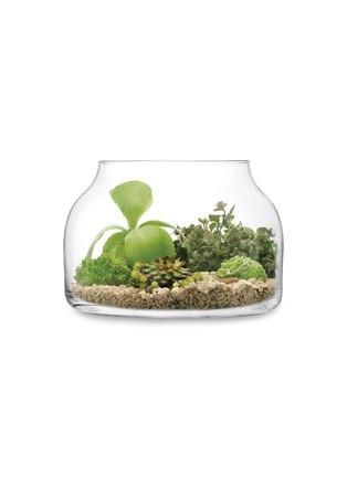 - LSA - Plant large funnel pot
