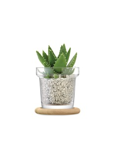 Lsa Plant pot