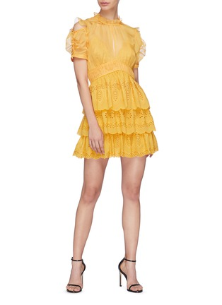 Figure View - Click To Enlarge - SELF-PORTRAIT - Ruffle chiffon panel tiered broderie anglaise mini dress