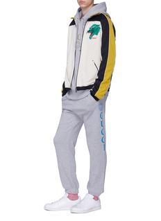 Gucci 'Privilegium Perpetuum' graphic appliqué stripe zip hoodie