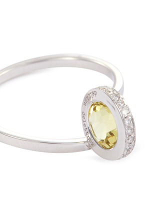 Detail View - Click To Enlarge - DELFINA DELETTREZ - 'Seal' diamond beryllium 18k white gold ring