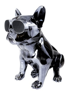 Jarre Technologies AeroBull HD1 bluetooth speaker – Chrome Black