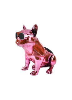 Jarre Technologies AeroBull XS1 bluetooth speaker – Chrome Pink