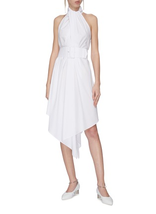 Figure View - Click To Enlarge - 16ARLINGTON - 'Abella' belted trapeze dress